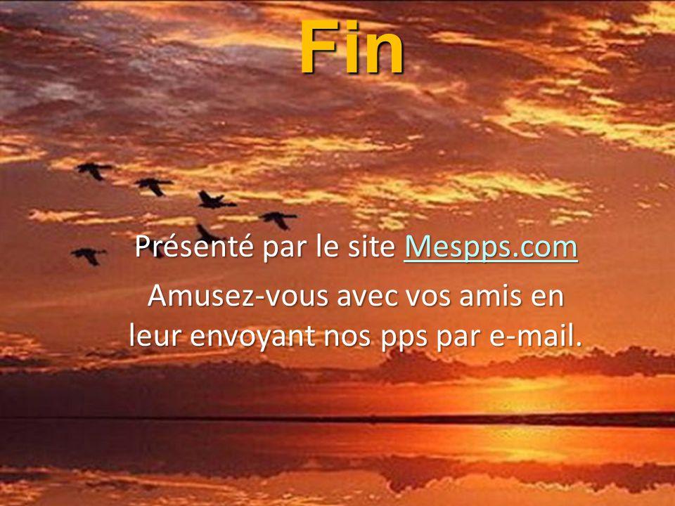 """""""Demande aux bêtes, elles t'instruiront ; aux oiseaux du ciel, ils te parleront ; à la terre, elle t'enseignera ; et les poissons des mers t'expliquer"""