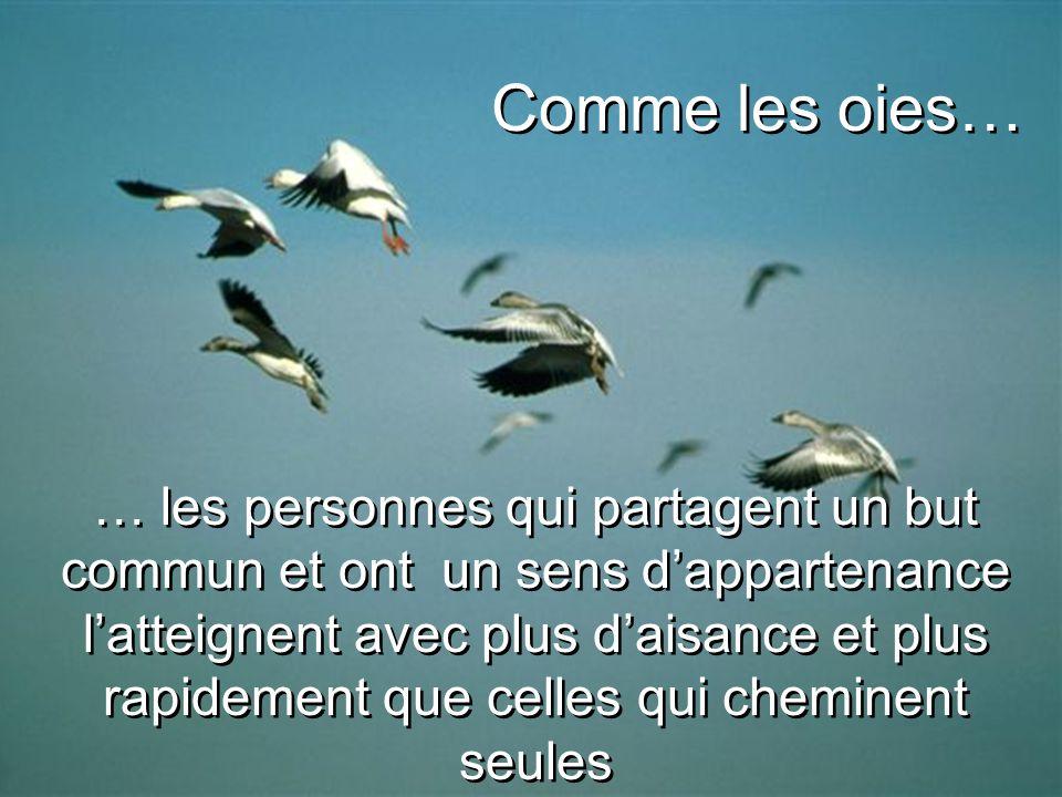 … les personnes qui partagent un but commun et ont un sens d'appartenance l'atteignent avec plus d'aisance et plus rapidement que celles qui cheminent seules Comme les oies…