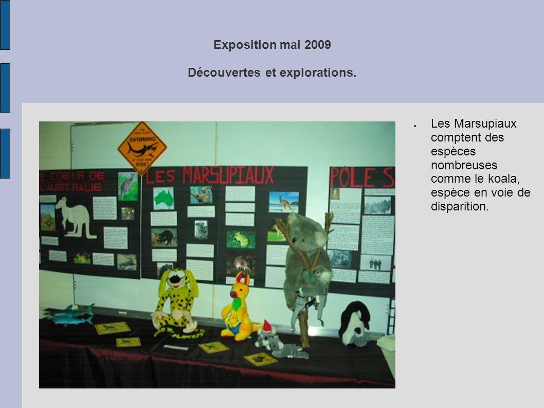 Exposition mai 2009 Découvertes et explorations. ● Les Marsupiaux comptent des espèces nombreuses comme le koala, espèce en voie de disparition.