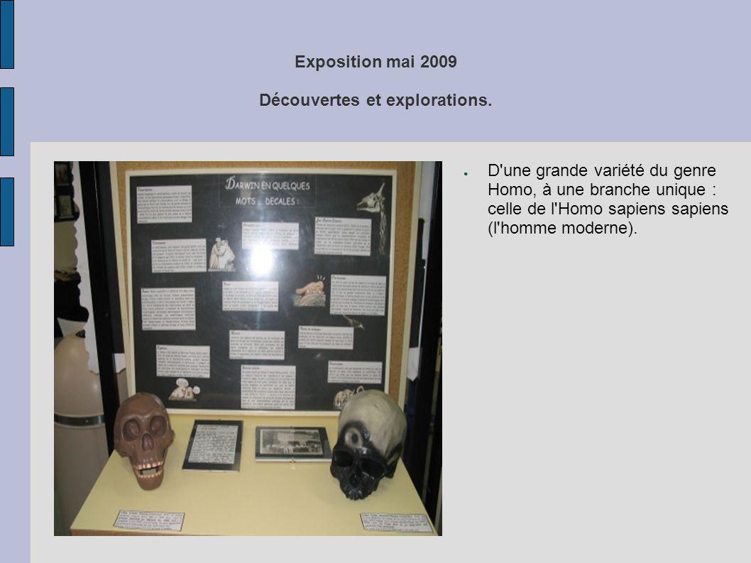 Exposition mai 2009 Découvertes et explorations. ● D'une grande variété du genre Homo, à une branche unique : celle de l'Homo sapiens sapiens (l'homme