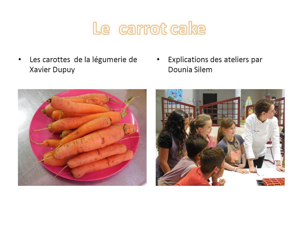 Les carottes de la légumerie de Xavier Dupuy Explications des ateliers par Dounia Silem