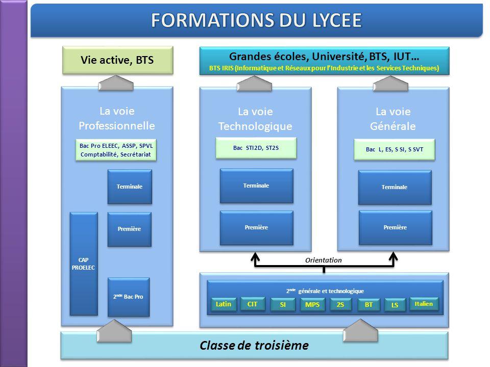 Classe de troisième La voie Professionnelle Vie active, BTS 2 nde Bac Pro Première Terminale Bac Pro ELEEC, ASSP, SPVL Comptabilité, Secrétariat Bac P