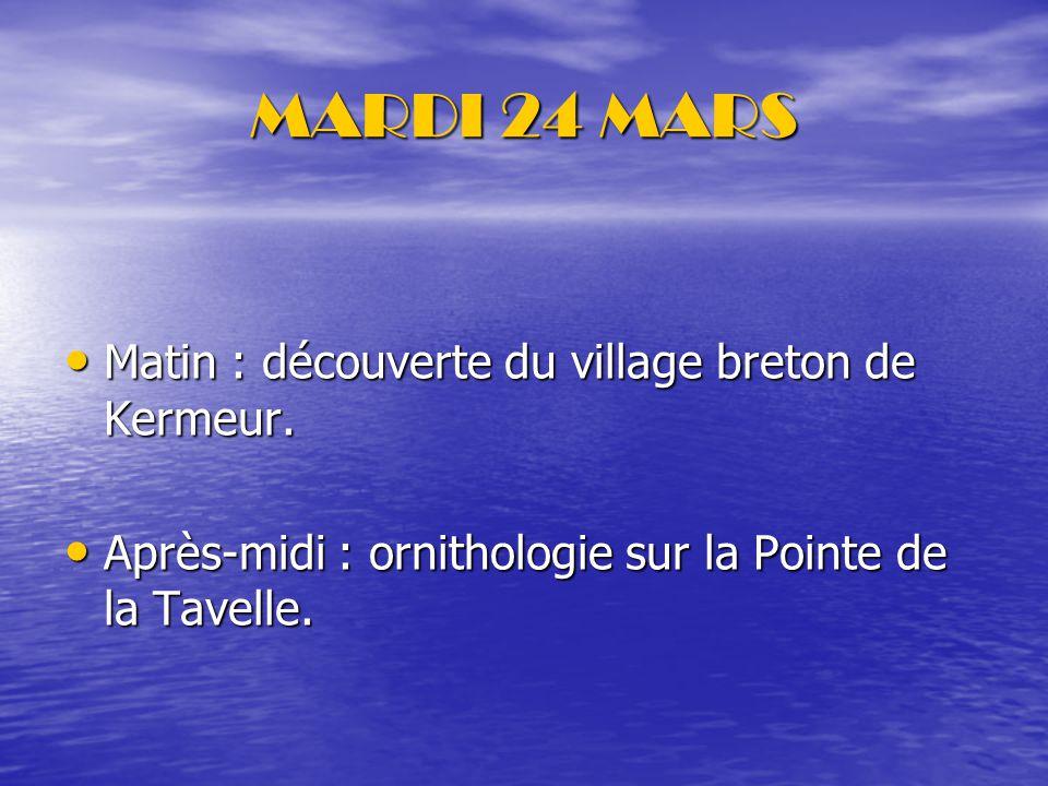 MARDI 24 MARS Matin : découverte du village breton de Kermeur.