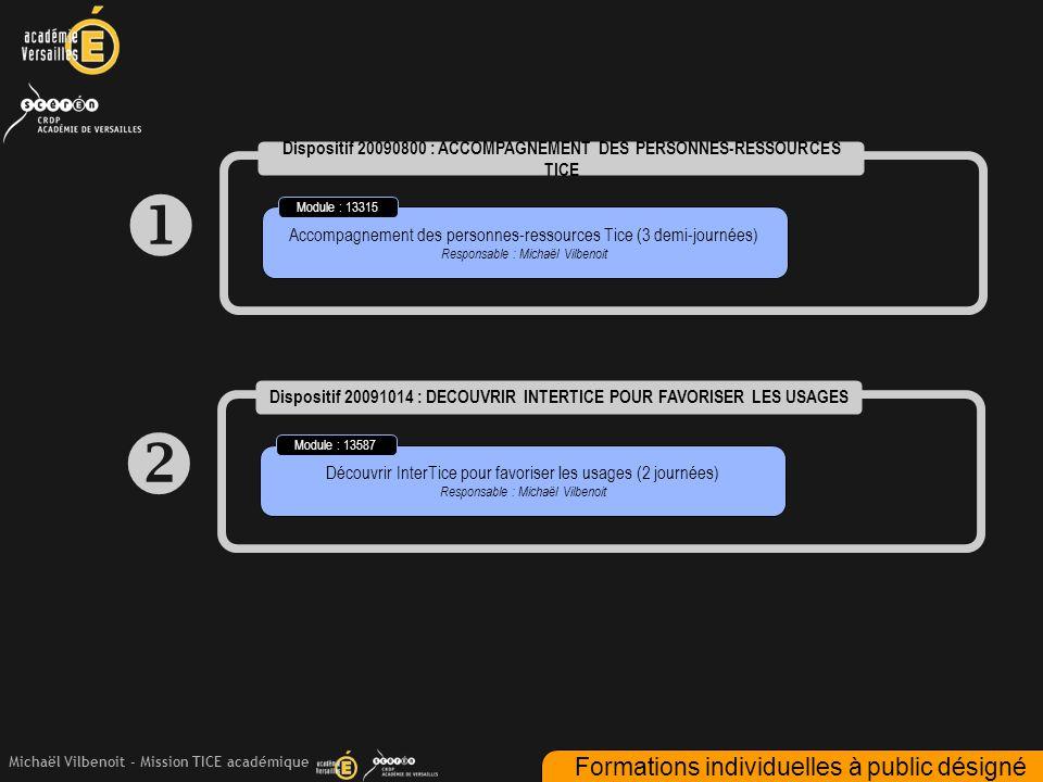 Michaël Vilbenoit - Mission TICE académique  Dispositif 20090800 : ACCOMPAGNEMENT DES PERSONNES-RESSOURCES TICE Accompagnement des personnes-ressourc