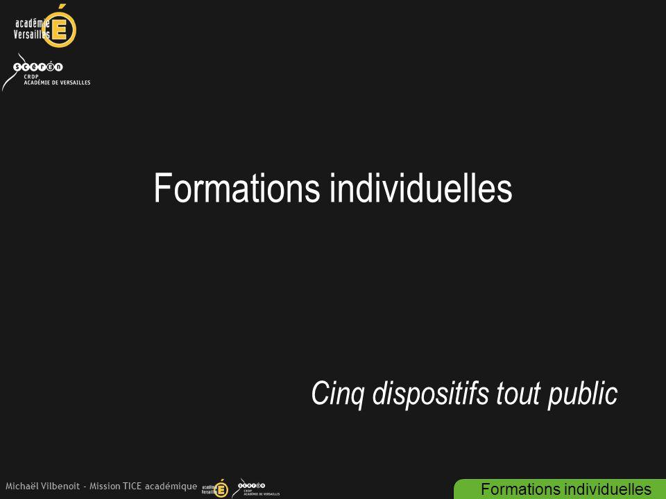 Michaël Vilbenoit - Mission TICE académique Formations individuelles Cinq dispositifs tout public Formations individuelles