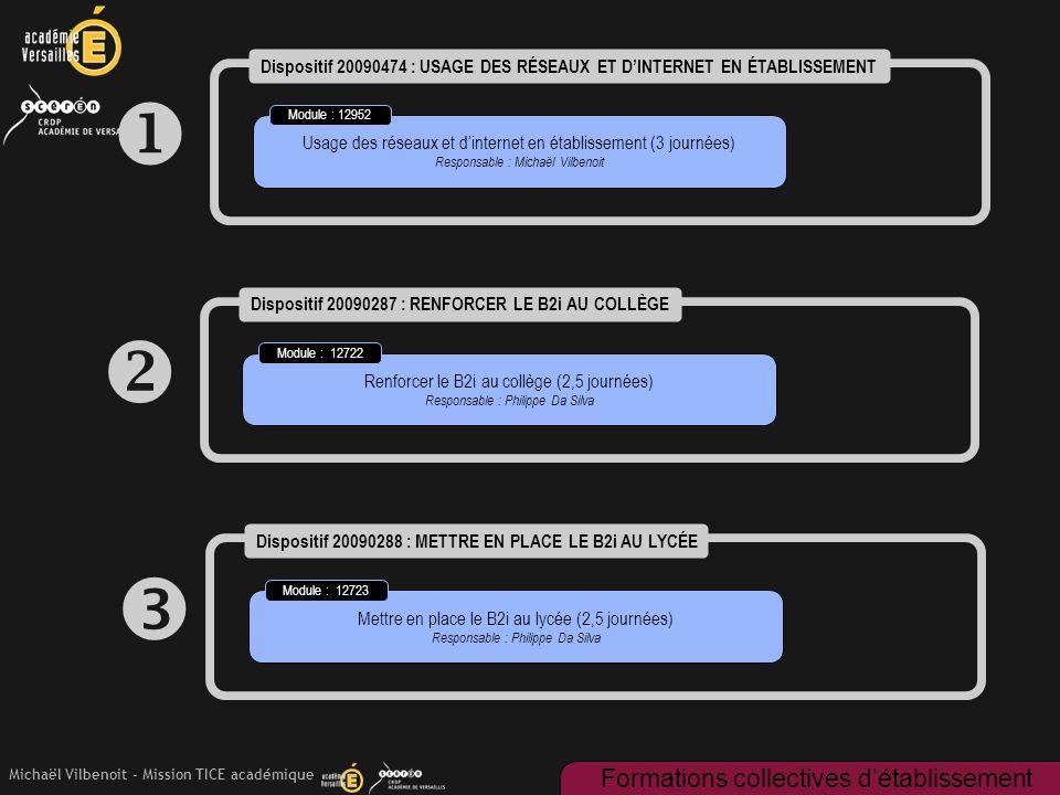 Michaël Vilbenoit - Mission TICE académique  Dispositif 20090474 : USAGE DES RÉSEAUX ET D'INTERNET EN ÉTABLISSEMENT Usage des réseaux et d'internet e