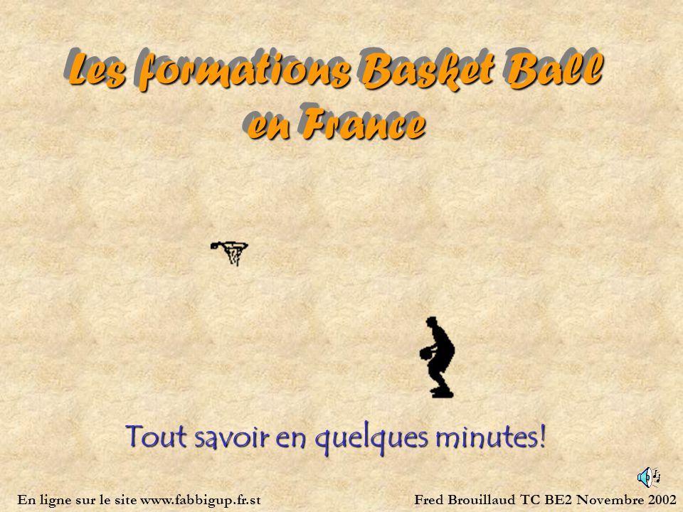 Les formations Basket Ball en France Tout savoir en quelques minutes! Fred Brouillaud TC BE2 Novembre 2002En ligne sur le site www.fabbigup.fr.st