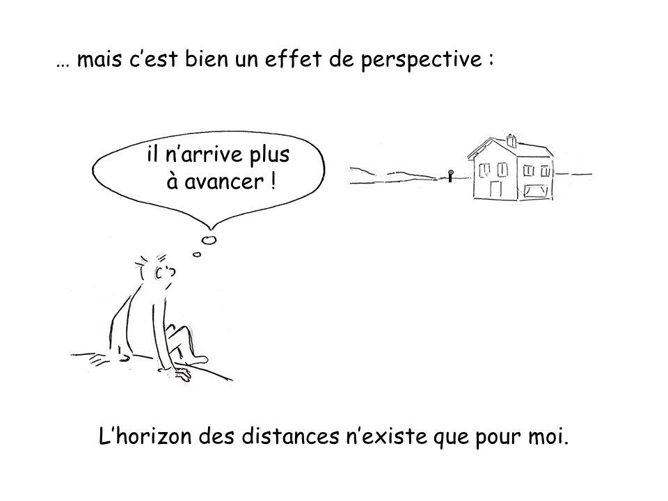 … mais c'est bien un effet de perspective : L'horizon des distances n'existe que pour moi. il n'arrive plus à avancer !