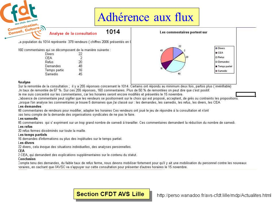 Section CFDT AVS Lille http://perso.wanadoo.fr/avs-cfdt.lille/mdp/Actualites.html Adhérence aux flux Analyse de la consultation