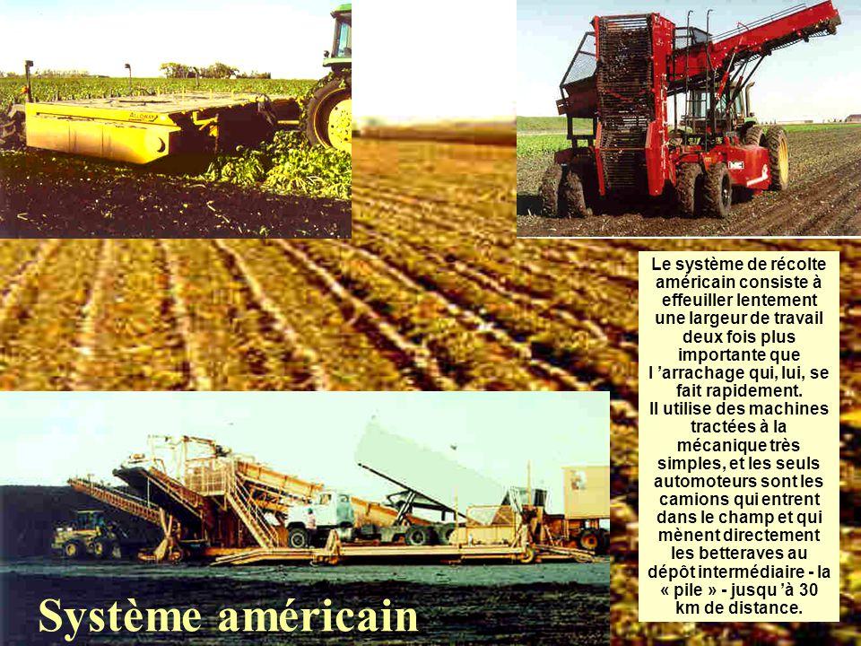 Système américain Le système de récolte américain consiste à effeuiller lentement une largeur de travail deux fois plus importante que l 'arrachage qui, lui, se fait rapidement.