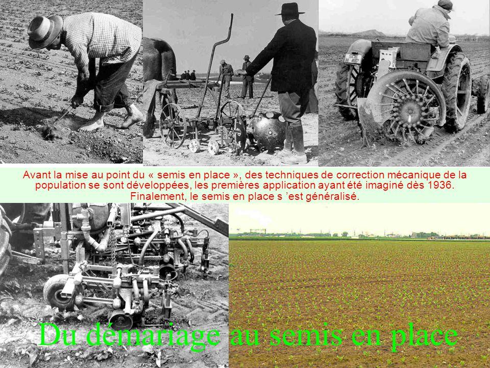 Du démariage au semis en place Avant la mise au point du « semis en place », des techniques de correction mécanique de la population se sont développées, les premières application ayant été imaginé dès 1936.