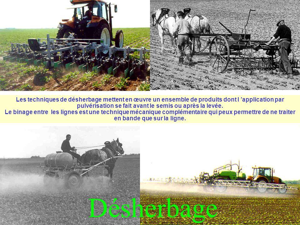 Désherbage Les techniques de désherbage mettent en œuvre un ensemble de produits dont l 'application par pulvérisation se fait avant le semis ou après la levée.