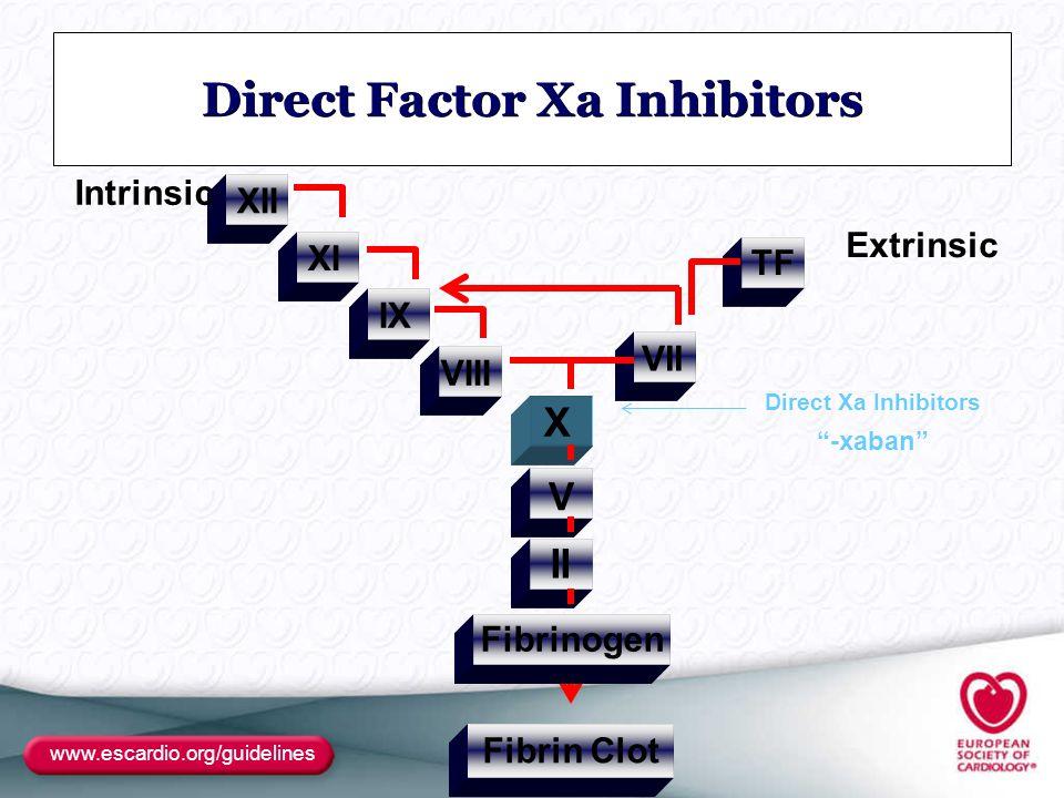 "www.escardio.org/guidelines Direct Factor Xa Inhibitors Fibrin Clot XII VII VIII IX XI Fibrinogen II V X TF Intrinsic Extrinsic Direct Xa Inhibitors """