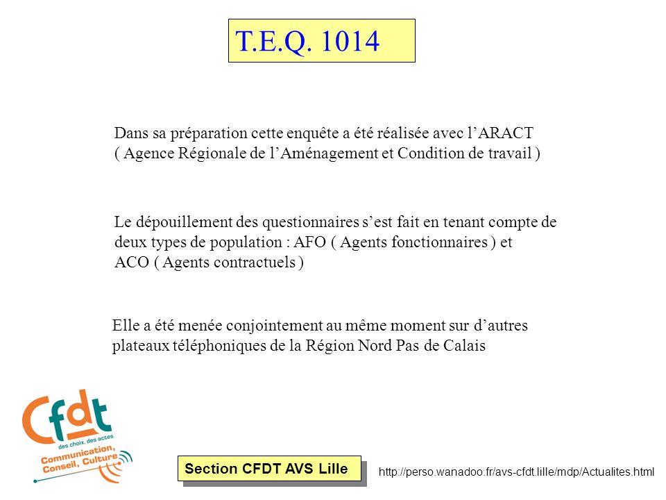Section CFDT AVS Lille T.E.Q.