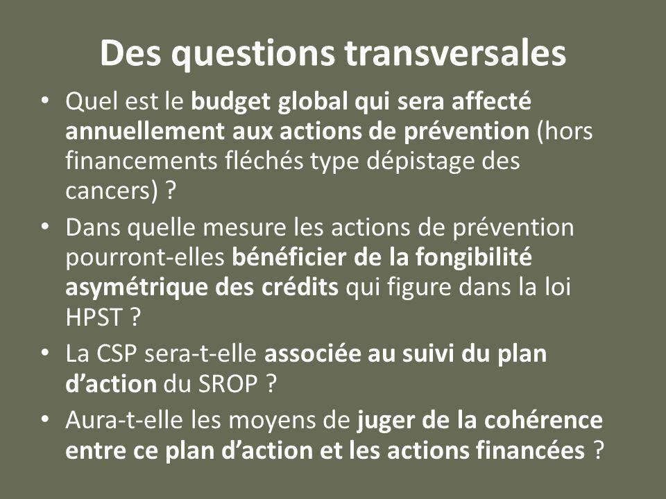 Des questions transversales Quel est le budget global qui sera affecté annuellement aux actions de prévention (hors financements fléchés type dépistage des cancers) .