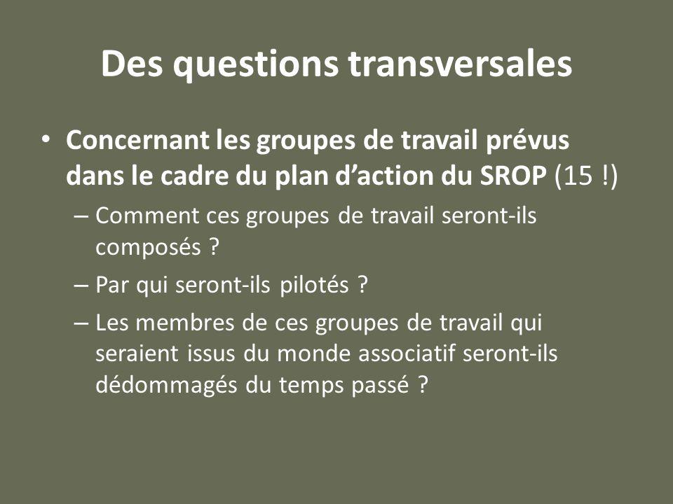 Des questions transversales Concernant les groupes de travail prévus dans le cadre du plan d'action du SROP (15 !) – Comment ces groupes de travail seront-ils composés .