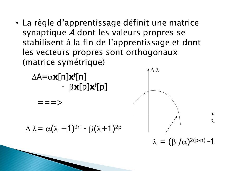 La règle d'apprentissage définit une matrice synaptique A dont les valeurs propres se stabilisent à la fin de l'apprentissage et dont les vecteurs pro