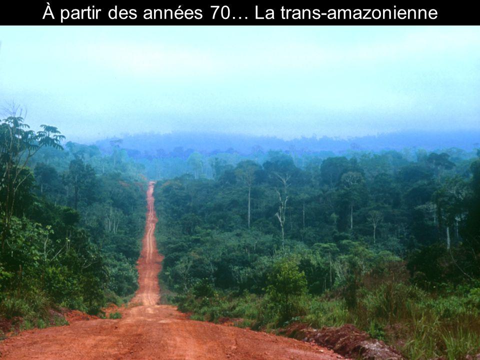 À partir des années 70… La déforestation massive.
