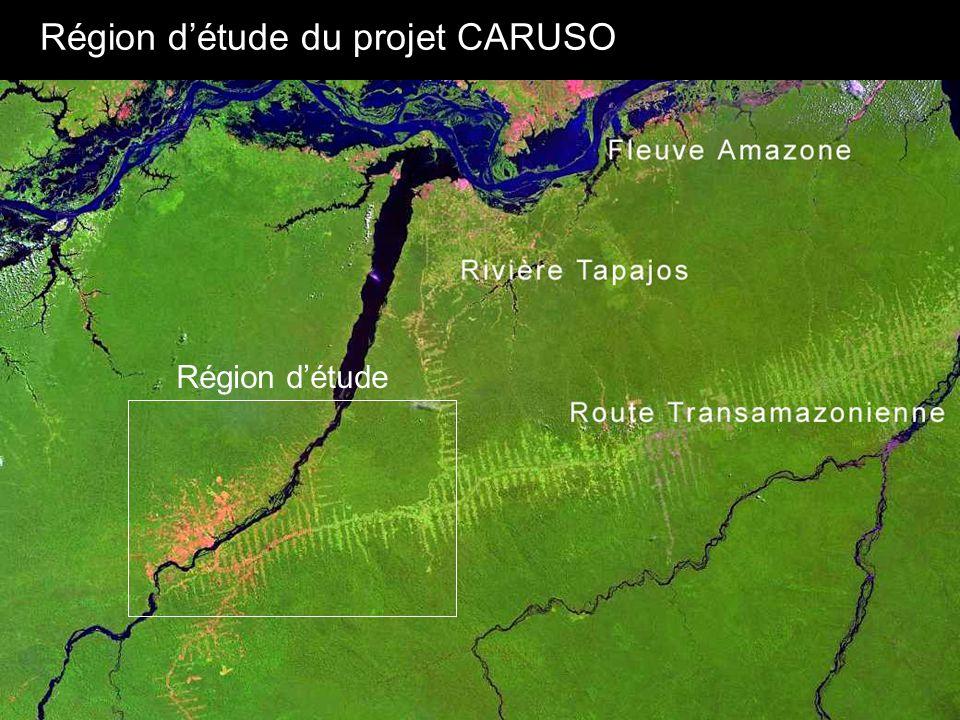Route trans-amazonienne Rivière Tapajos Région d'étude du projet CARUSO