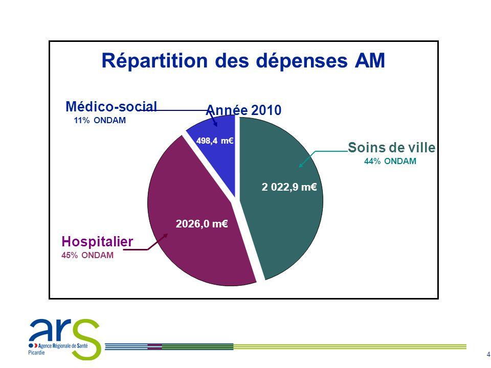 4 Médico-social 11% ONDAM 498,4 m€ Hospitalier 45% ONDAM 2026,0 m€ Soins de ville 44% ONDAM 2 022,9 m€ Répartition des dépenses AM Année 2010