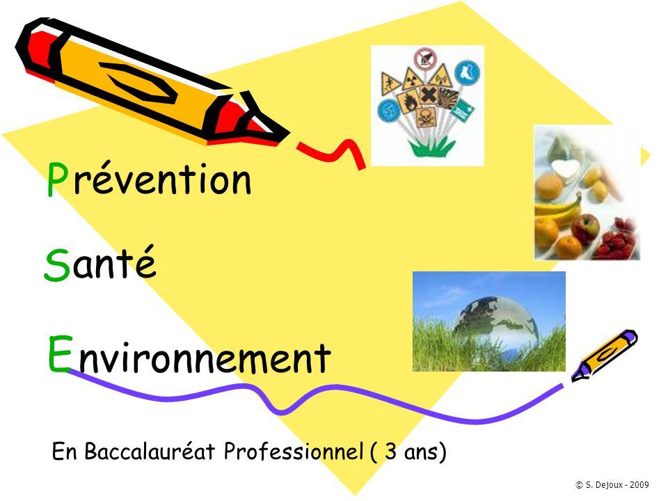 P révention S anté E nvironnement En Baccalauréat Professionnel ( 3 ans) © S. Dejoux - 2009