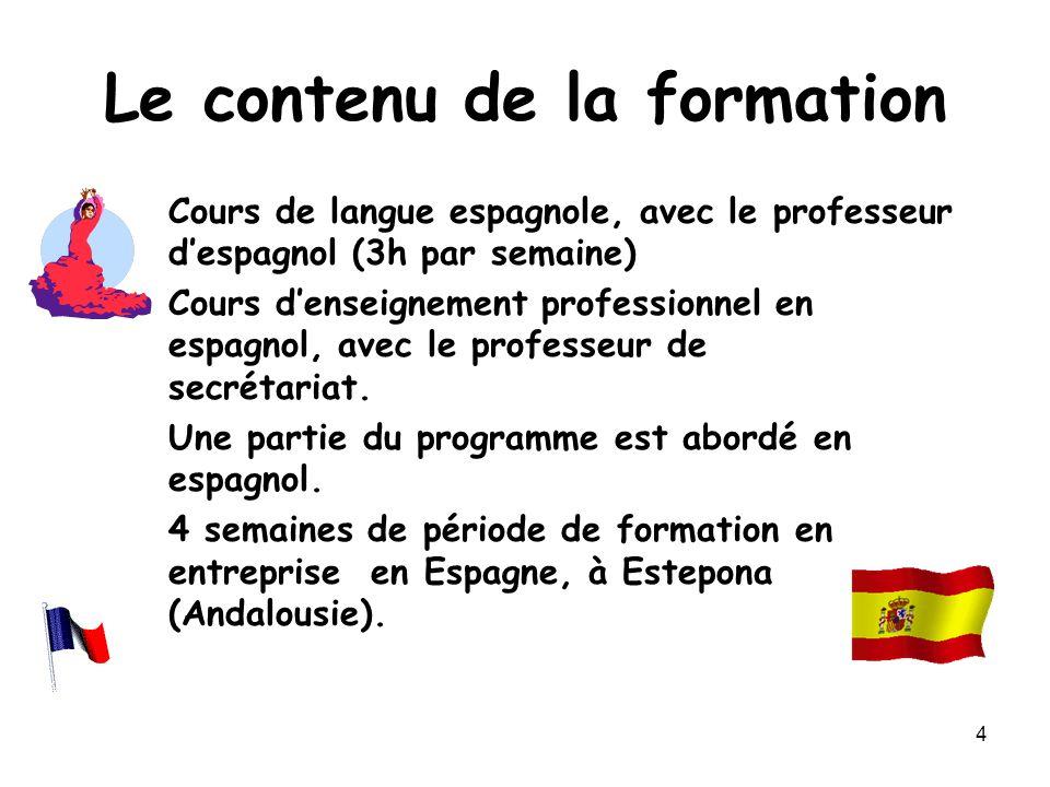 4 Le contenu de la formation Cours de langue espagnole, avec le professeur d'espagnol (3h par semaine) Cours d'enseignement professionnel en espagnol,