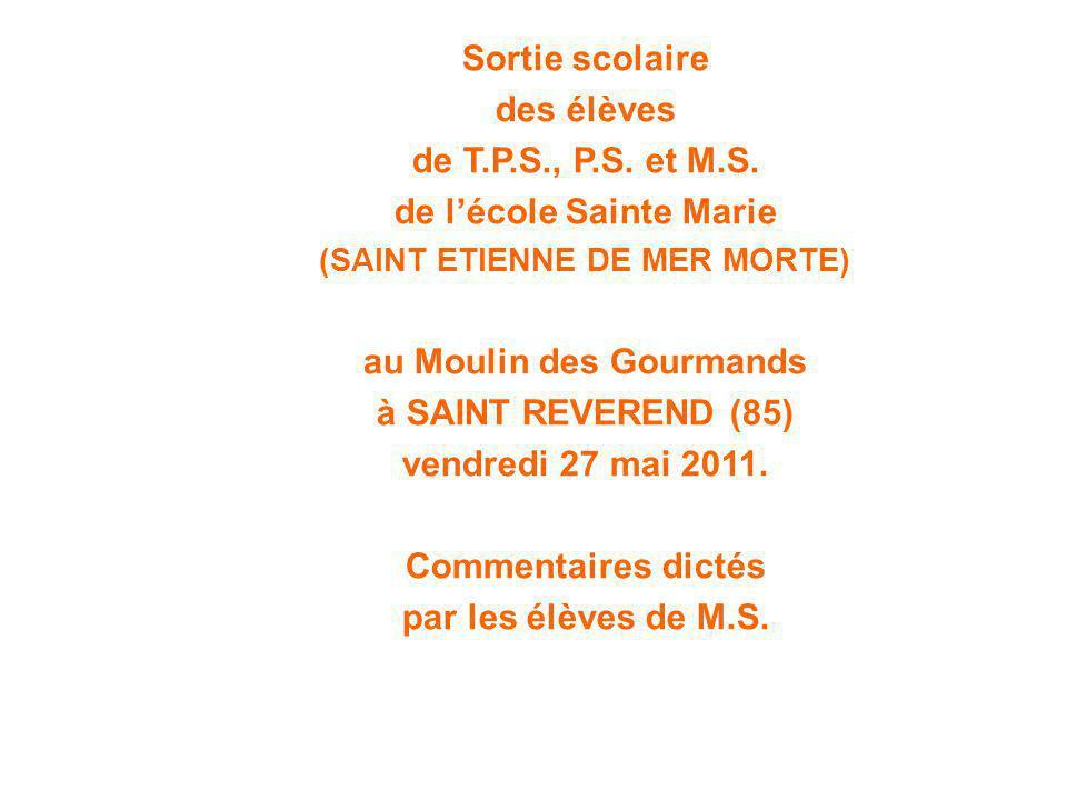 Sortie scolaire des élèves de T.P.S., P.S. et M.S. de l'école Sainte Marie (SAINT ETIENNE DE MER MORTE) au Moulin des Gourmands à SAINT REVEREND (85)