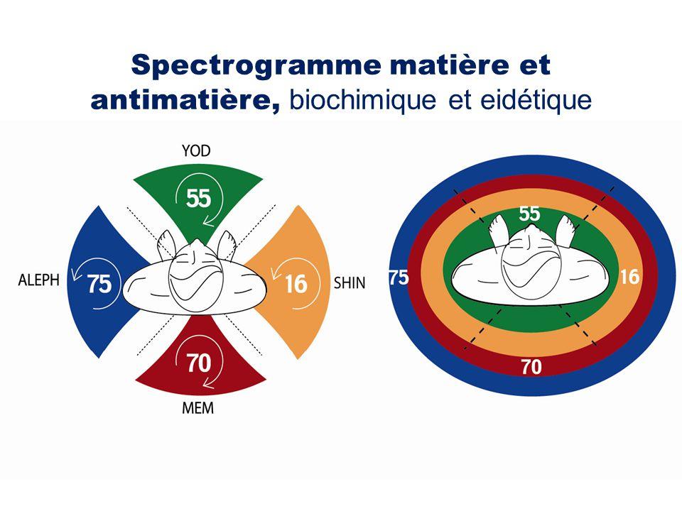 Spectrogramme matière et antimatière, biochimique et eidétique