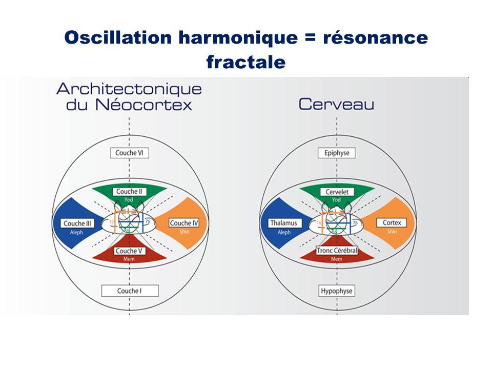 Oscillation harmonique = résonance fractale