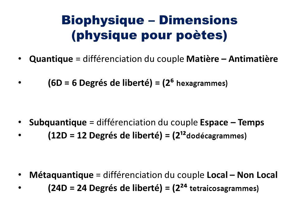 Biophysique – Dimensions (physique pour poètes) Quantique = différenciation du couple Matière – Antimatière (6D = 6 Degrés de liberté) = (2⁶ hexagramm