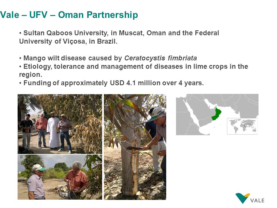 Vale – UFV – Oman Partnership Sultan Qaboos University, in Muscat, Oman and the Federal University of Viçosa, in Brazil.