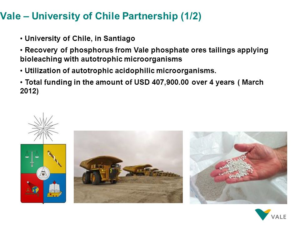 Vale – University of Chile Partnership (1/2) University of Chile, in Santiago Recovery of phosphorus from Vale phosphate ores tailings applying bioleaching with autotrophic microorganisms Utilization of autotrophic acidophilic microorganisms.