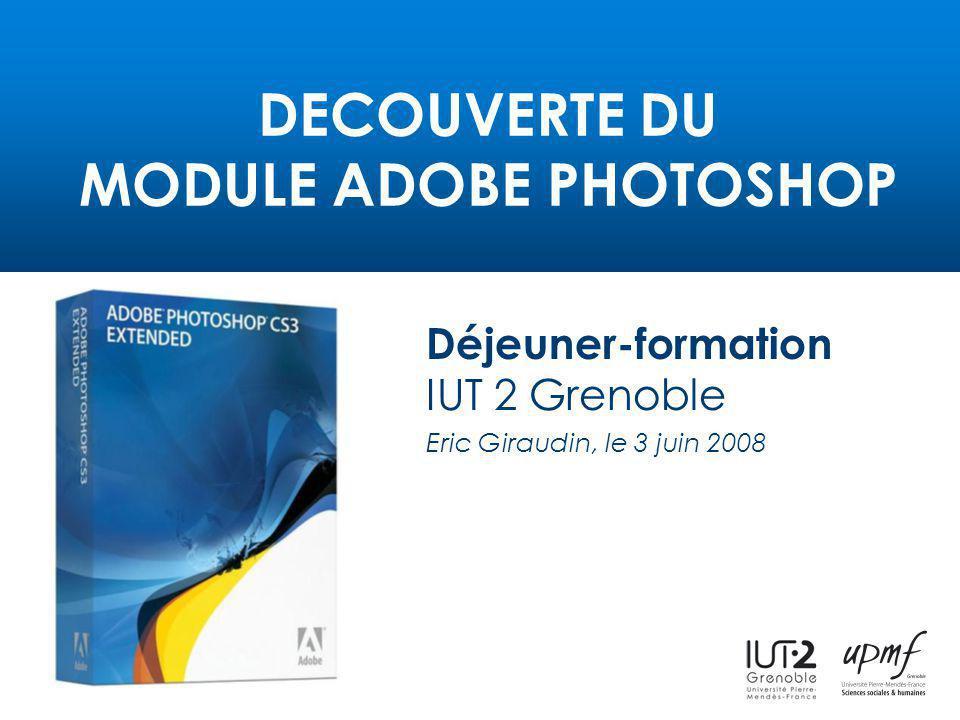 DECOUVERTE DU MODULE ADOBE PHOTOSHOP Déjeuner-formation IUT 2 Grenoble Eric Giraudin, le 3 juin 2008