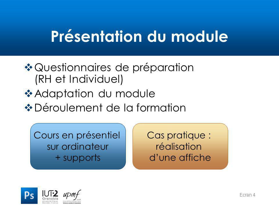 Ecran 4 Présentation du module  Questionnaires de préparation (RH et Individuel)  Adaptation du module  Déroulement de la formation Cours en présen