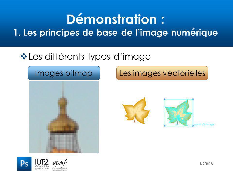 Ecran 6 Démonstration : 1. Les principes de base de l'image numérique  Les différents types d'image Images bitmapLes images vectorielles