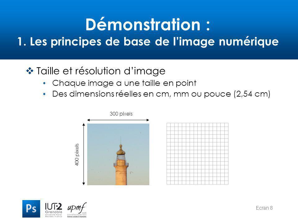 Ecran 8 Démonstration : 1. Les principes de base de l'image numérique  Taille et résolution d'image Chaque image a une taille en point Des dimensions