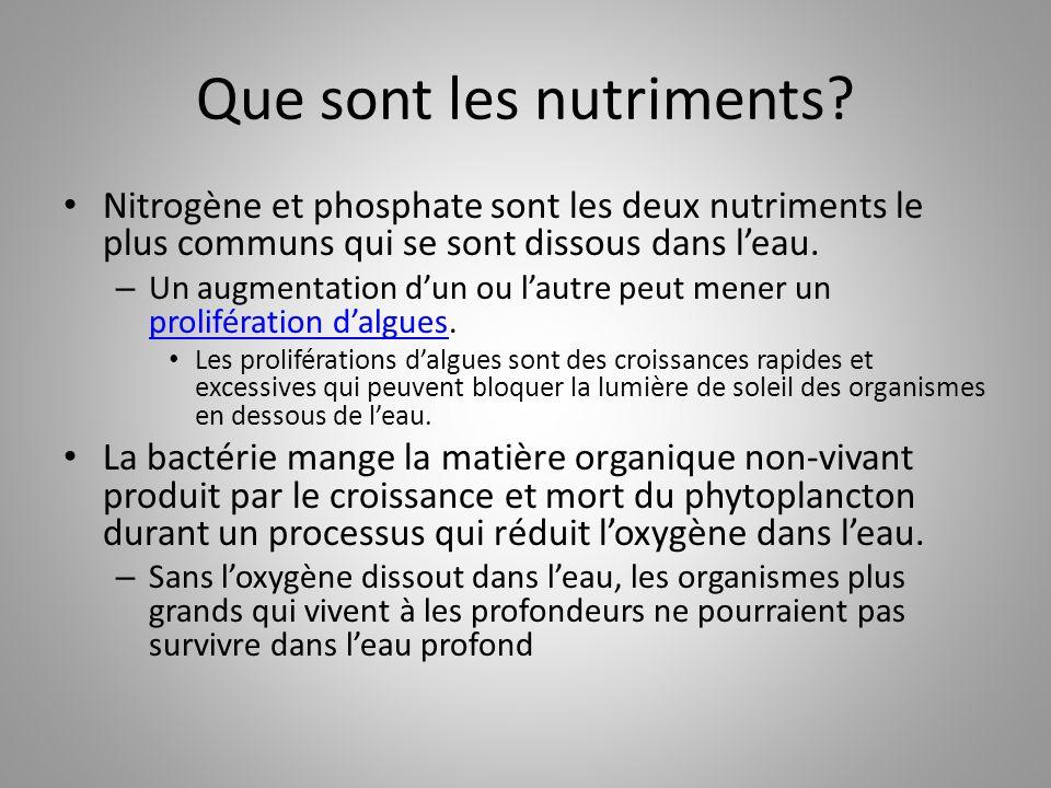 Que sont les nutriments? Nitrogène et phosphate sont les deux nutriments le plus communs qui se sont dissous dans l'eau. – Un augmentation d'un ou l'a