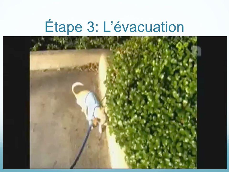 Étape 3: L'évacuation