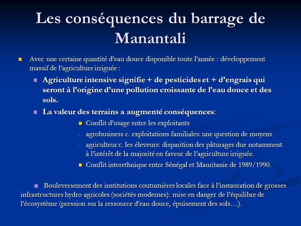 Les conséquences du barrage de Manantali Avec une certaine quantité d'eau douce disponible toute l'année : développement massif de l'agriculture irrig