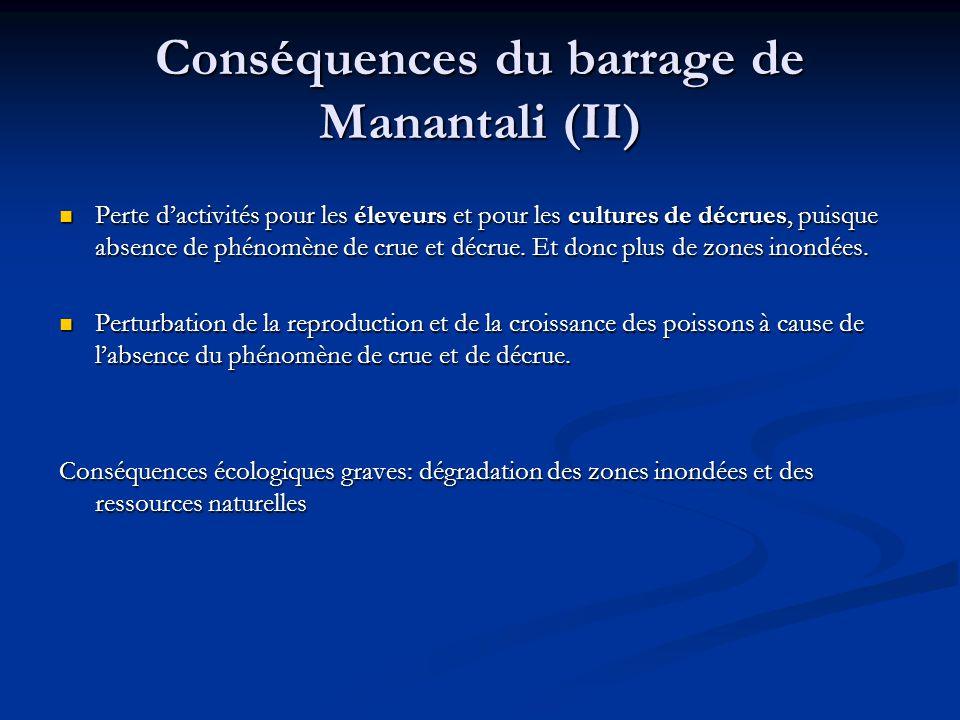 Conséquences du barrage de Manantali (II) Perte d'activités pour les éleveurs et pour les cultures de décrues, puisque absence de phénomène de crue et décrue.