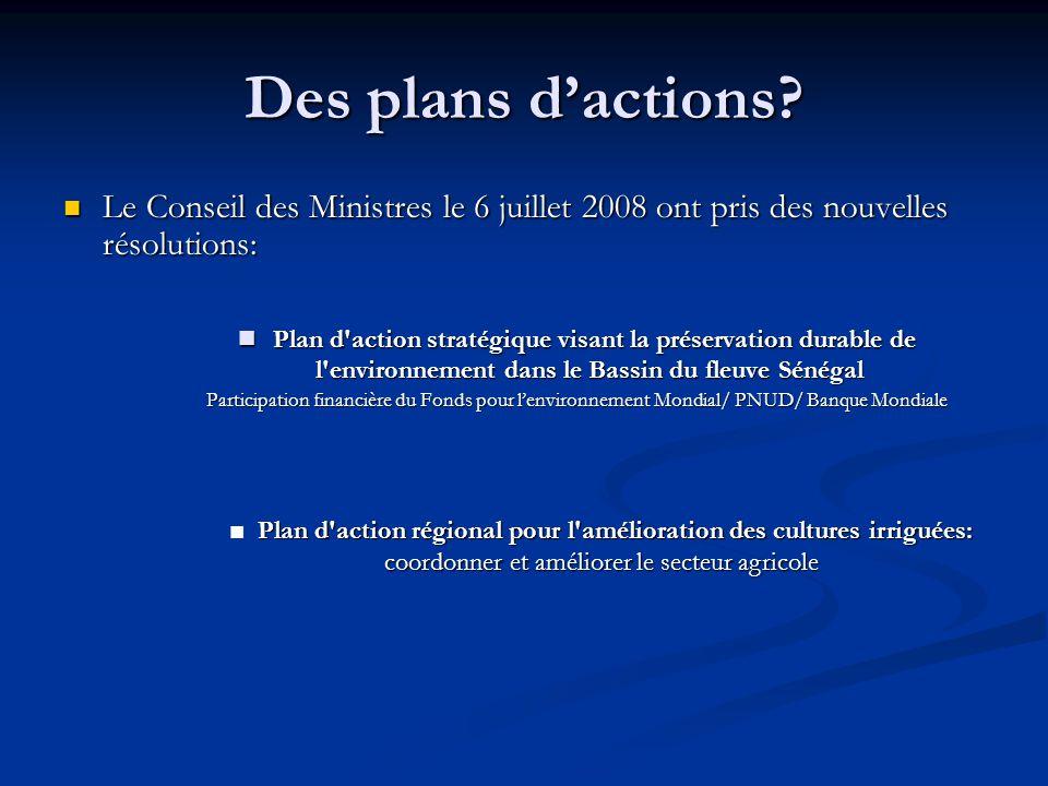 Des plans d'actions? Le Conseil des Ministres le 6 juillet 2008 ont pris des nouvelles résolutions: Le Conseil des Ministres le 6 juillet 2008 ont pri