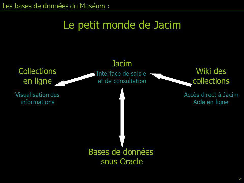 Les bases de données du Muséum : Jacim II.1 : le tableur Exportation de données Peut se faire sous format Excel ou texte Choisir les champs voulus, dans l'ordre Passer dans l'éditeur Revenir dans le tableur Charger Exporter (baguette magique) 79
