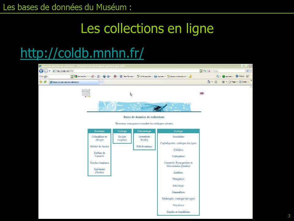 Les collections en ligne Les bases de données du Muséum : Recherche sur différents critères 4