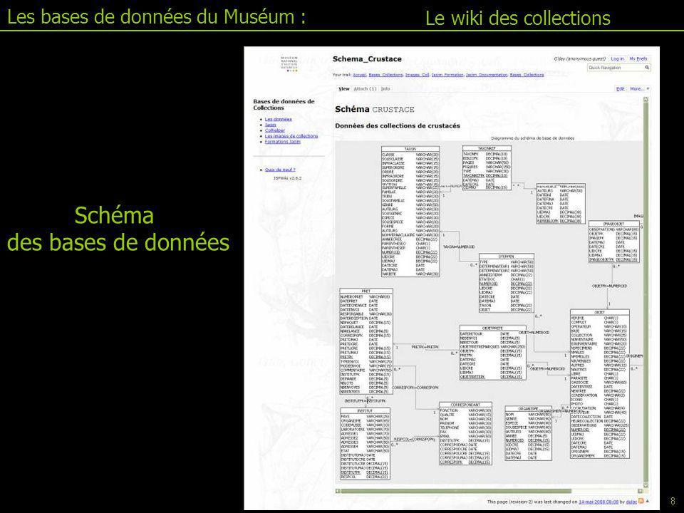 Schéma des bases de données Le wiki des collections Les bases de données du Muséum : 8