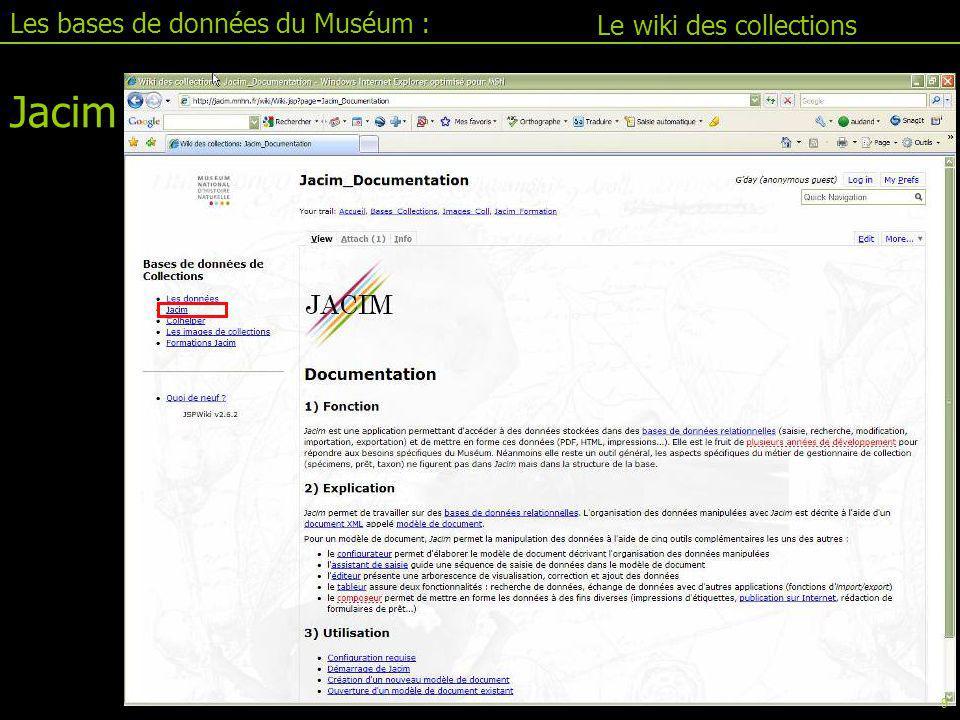 Jacim II.1 : le tableur Les bases de données du Muséum : Le tableur Code couleur Rechercher : Bleu Ajouter : jaune Charger : vert Table Tableur Formulaire 30