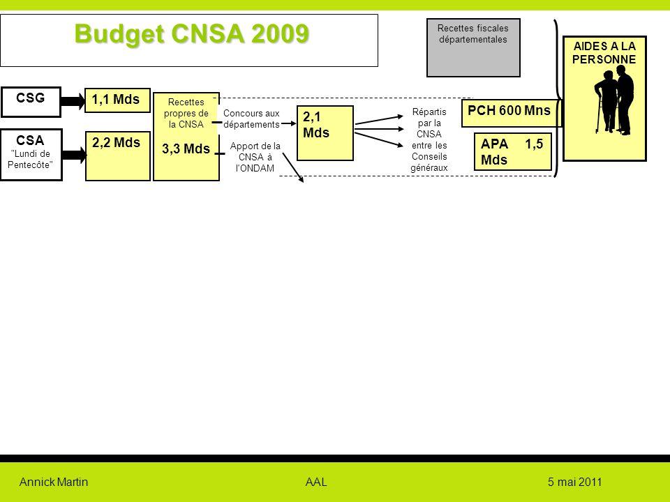 Annick Martin AAL 5 mai 2011 individuel 1,1 Mds 2,2 Mds Recettes propres de la CNSA 3,3 Mds 2,1 Mds Concours aux départements Apport de la CNSA à l'ON