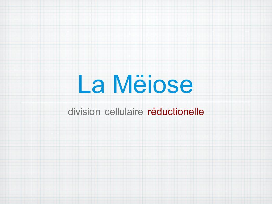 La Mëiose division cellulaire réductionelle