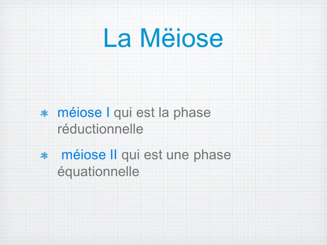 La Mëiose méiose I qui est la phase réductionnelle méiose II qui est une phase équationnelle