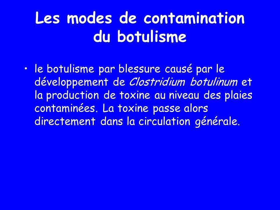 le botulisme par blessure causé par le développement de Clostridium botulinum et la production de toxine au niveau des plaies contaminées. La toxine p