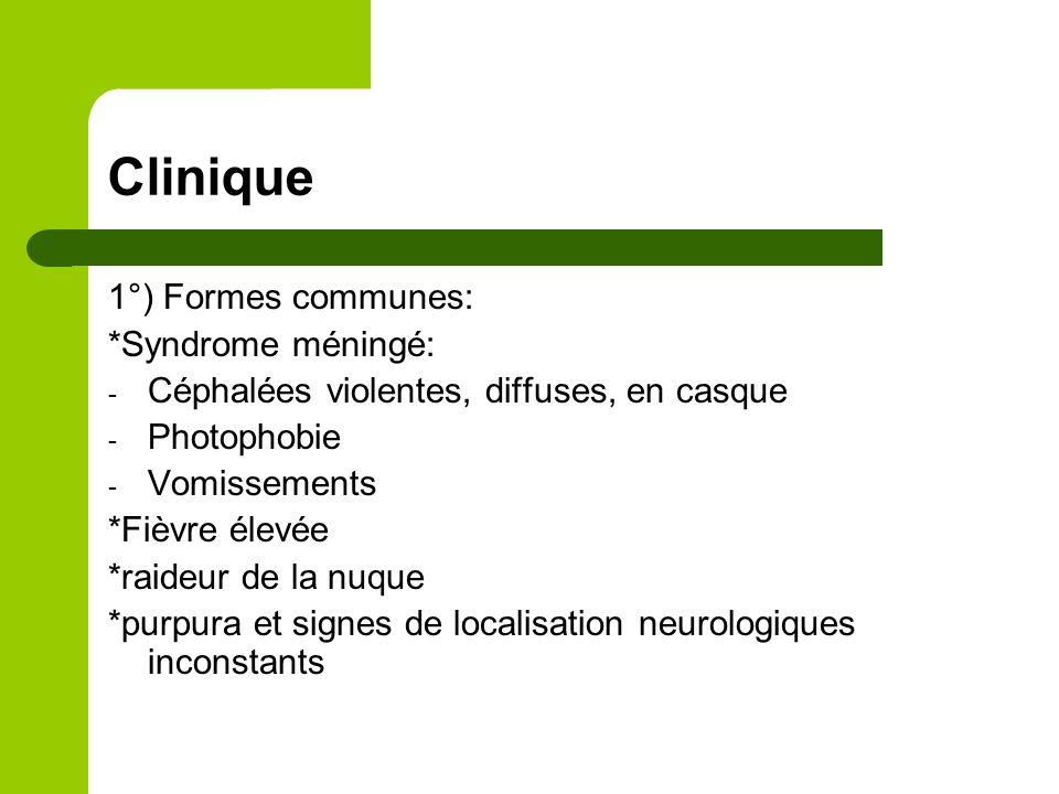 Clinique: 2°)Formes cliniques - Méningites purulentes de l'adulte et l'enfant > 5ans: Méningite à méningocoque Méningite à pneumocoque Méningite à listéria
